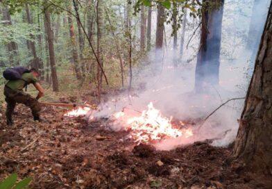 Пожарът над Югово и Наречен засега не застрашавал хората